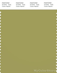 PANTONE SMART 16-0532X Color Swatch Card, Moss