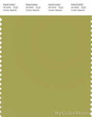 PANTONE SMART 16-0540X Color Swatch Card, Oasis