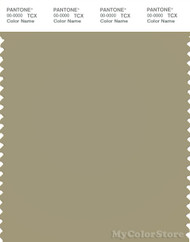 PANTONE SMART 16-0713X Color Swatch Card, Slate Green