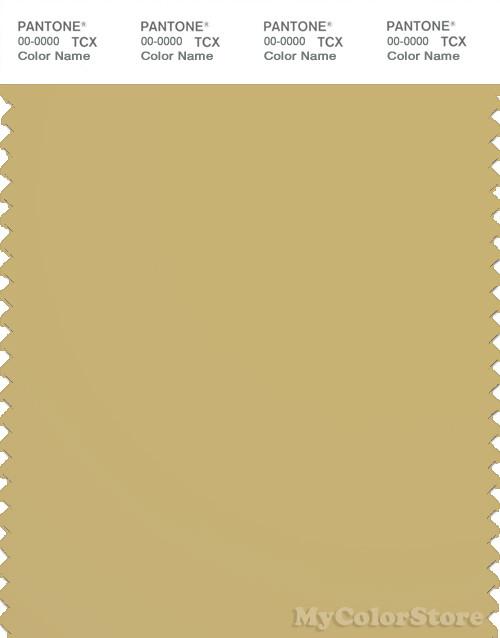 pantone smart 160836 tcx color swatch card pantone rich