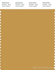 PANTONE SMART 16-0945X Color Swatch Card, Tinsel
