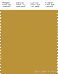 PANTONE SMART 16-0946X Color Swatch Card, Honey