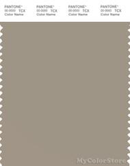 PANTONE SMART 16-1107X Color Swatch Card, Aluminum