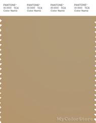 PANTONE SMART 16-1120X Color Swatch Card, Starfish