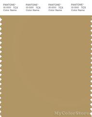PANTONE SMART 16-1126X Color Swatch Card, Antelope