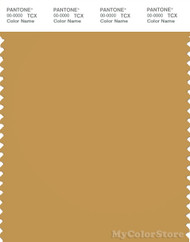 PANTONE SMART 16-1139X Color Swatch Card, Amber Gold