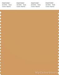PANTONE SMART 16-1144X Color Swatch Card, Oak Buff