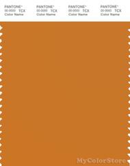 PANTONE SMART 16-1149X Color Swatch Card, Desert Sun