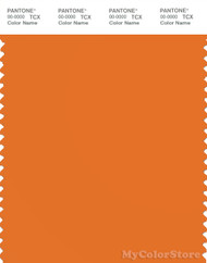 PANTONE SMART 16-1255X Color Swatch Card, Russett Orange