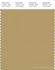 PANTONE SMART 16-1326X Color Swatch Card, Prairie Sand