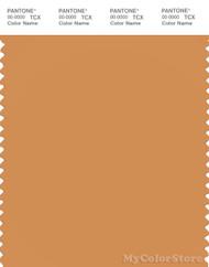 PANTONE SMART 16-1342X Color Swatch Card, Buckskin