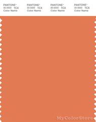 PANTONE SMART 16-1344X Color Swatch Card, Dusty Orange