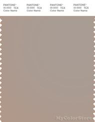 PANTONE SMART 16-1406X Color Swatch Card, Atmosphere