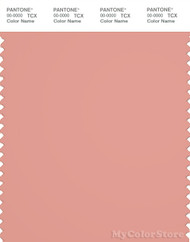 PANTONE SMART 16-1434X Color Swatch Card, Coral Almond
