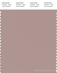 PANTONE SMART 16-1510X Color Swatch Card, Fawn