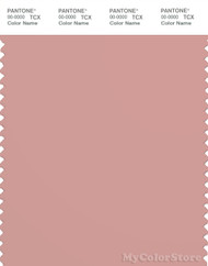 PANTONE SMART 16-1511X Color Swatch Card, Rose Tan