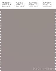 PANTONE SMART 16-3800X Color Swatch Card, Satellite