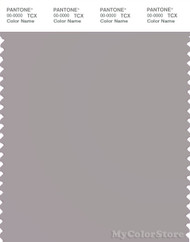 PANTONE SMART 16-3801X Color Swatch Card, Opal Gray