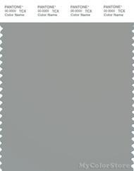 PANTONE SMART 16-4702X Color Swatch Card, Limestone