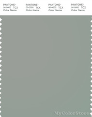 PANTONE SMART 16-5904X Color Swatch Card, Wrought Iron
