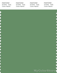PANTONE SMART 17-0123X Color Swatch Card, Stone Green