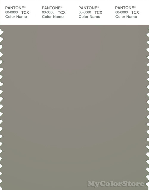PANTONE SMART 17-0205X Color Swatch Card, Elephant Skin