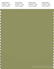 PANTONE SMART 17-0324X Color Swatch Card, Epsom