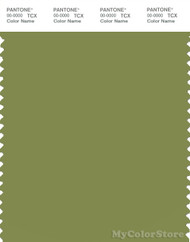 PANTONE SMART 17-0330X Color Swatch Card, Turtle Green
