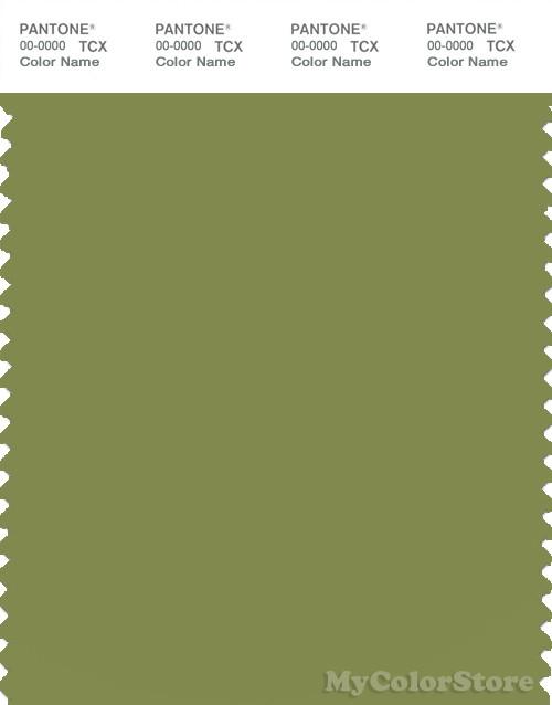 PANTONE SMART 17-0330X Color Swatch Card, Turtle Green
