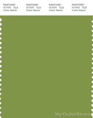 PANTONE SMART 17-0336X Color Swatch Card, Peridot