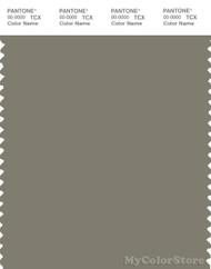 PANTONE SMART 17-0613X Color Swatch Card, Vertiver Green