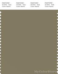 PANTONE SMART 17-0620X Color Swatch Card, Aloe
