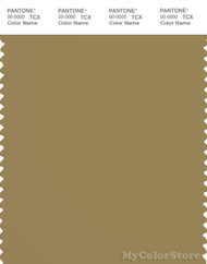 PANTONE SMART 17-0929X Color Swatch Card, Olive Green