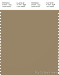 PANTONE SMART 17-1022X Color Swatch Card, Kelp