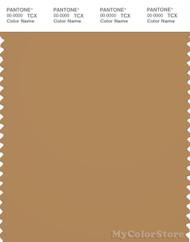 PANTONE SMART 17-1045X Color Swatch Card, Apple Cinnamon