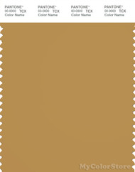 PANTONE SMART 17-1047X Color Swatch Card, Honey Mustard