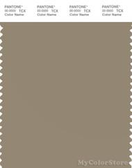 PANTONE SMART 17-1113X Color Swatch Card, Coriander