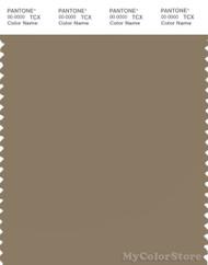 PANTONE SMART 17-1118X Color Swatch Card, Lead Gray