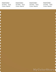 PANTONE SMART 17-1129X Color Swatch Card, Wood Thrush