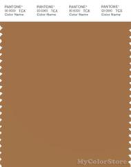 PANTONE SMART 17-1134X Color Swatch Card, Brown Sugar