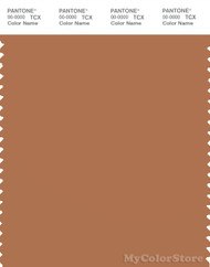 PANTONE SMART 17-1143X Color Swatch Card, Hazel