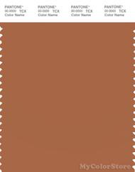 PANTONE SMART 17-1147X Color Swatch Card, Amber Brown