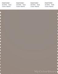PANTONE SMART 17-1210X Color Swatch Card, Moon Rock