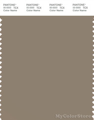 PANTONE SMART 17-1310X Color Swatch Card, Timber Wolf