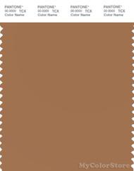 PANTONE SMART 17-1330X Color Swatch Card, Lion