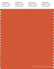 PANTONE SMART 17-1452X Color Swatch Card, Koi