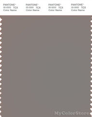 PANTONE SMART 17-1500X Color Swatch Card, Steeple Gray