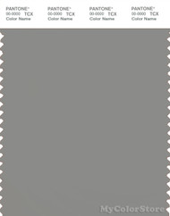 PANTONE SMART 17-1501X Color Swatch Card, Wild Dove