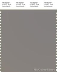 PANTONE SMART 17-1502X Color Swatch Card, Medium Gray