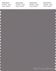 PANTONE SMART 17-1503X Color Swatch Card, Storm Front